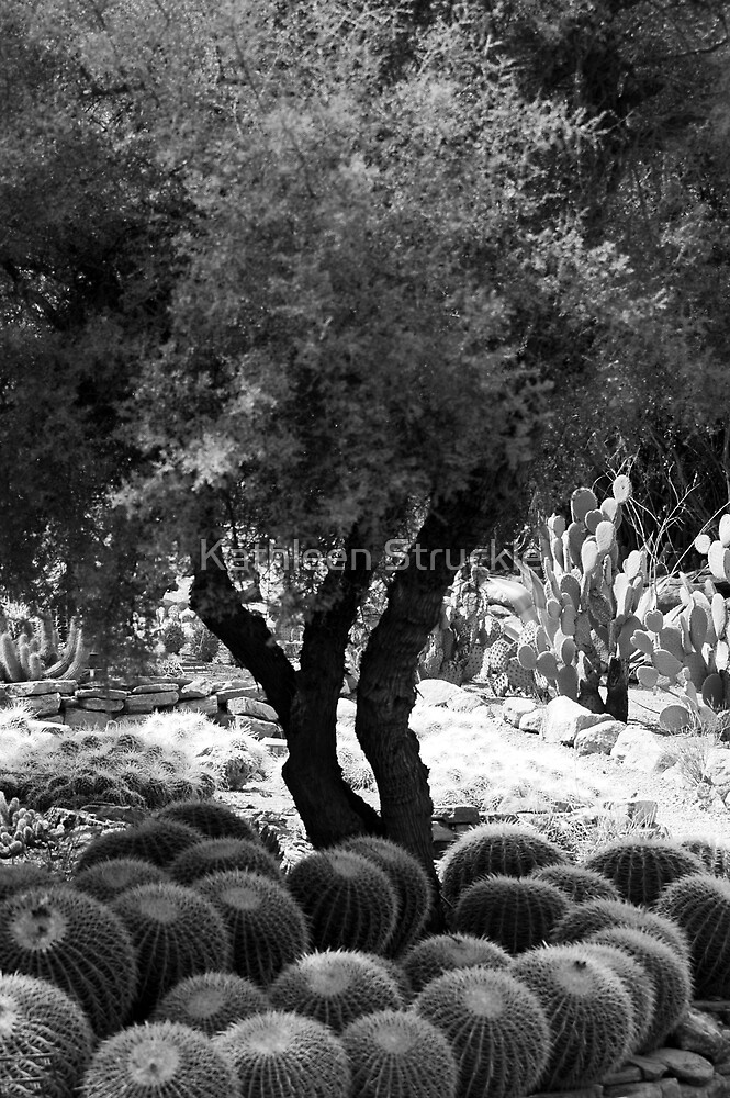 Tree And Cactus by Kathleen Struckle