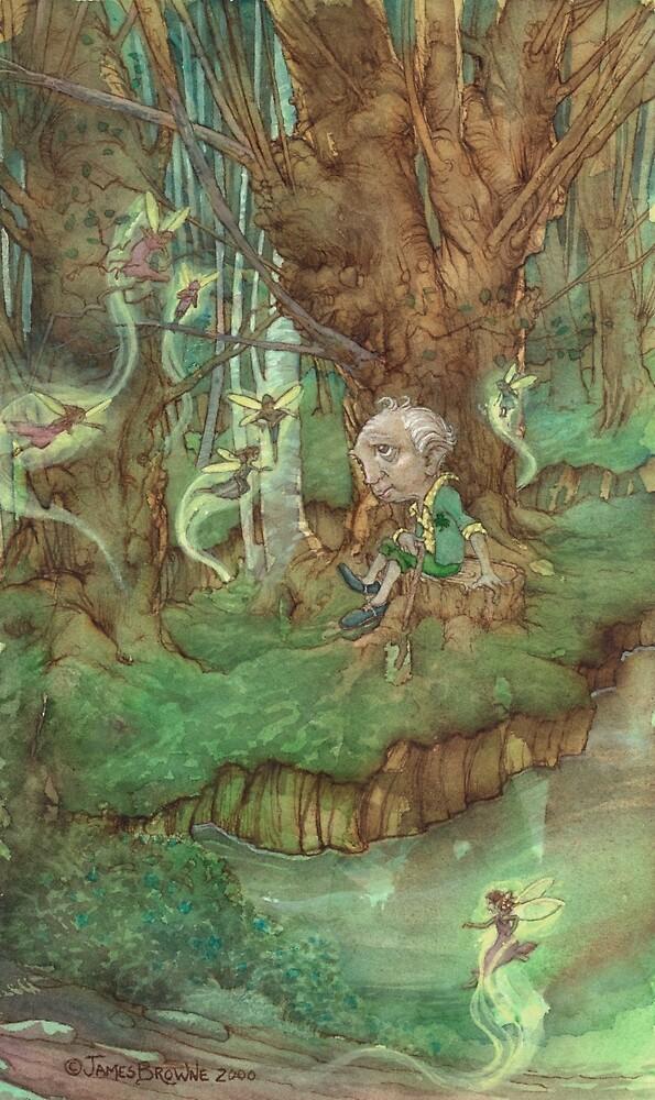 Irish Tale by JamesBrowneArt