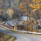 Rural Road 2 by Sarah McKoy