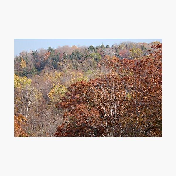 Fall on Display Photographic Print