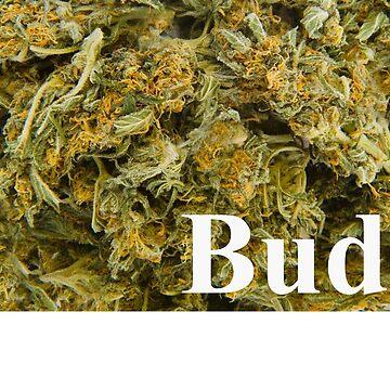 Bud? by Knobrot