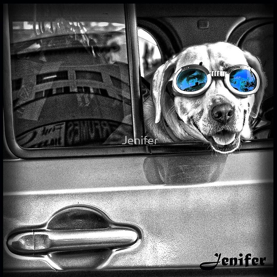 dog by Jenifer