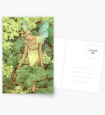 Dew Fairy Postcards