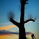 Riding Into The Night by Alan Watt
