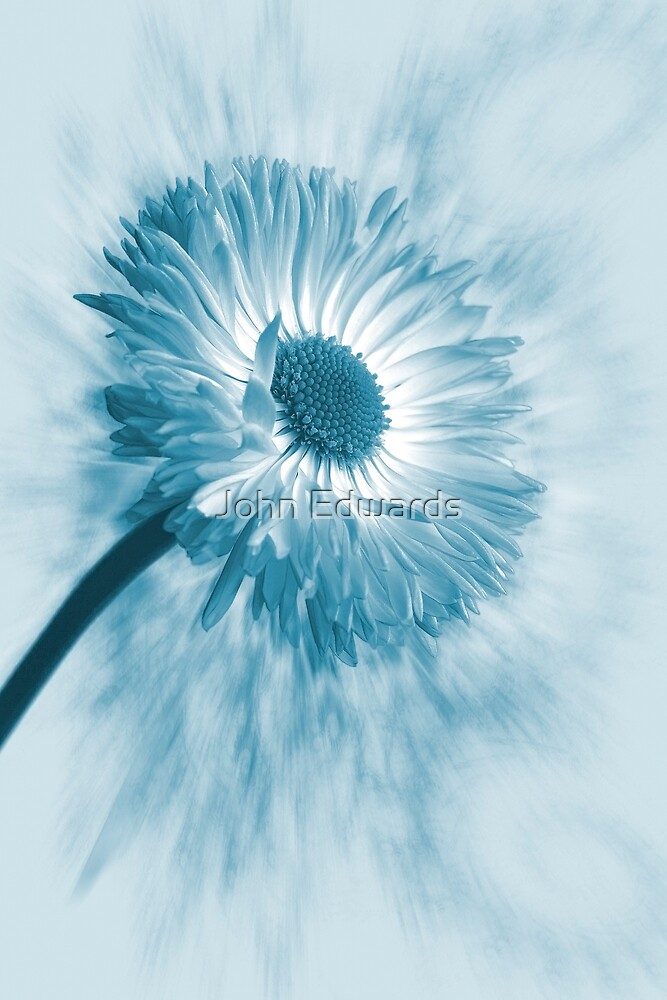 Blue Belle by John Edwards