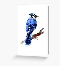 Watercolor blue jay  Greeting Card