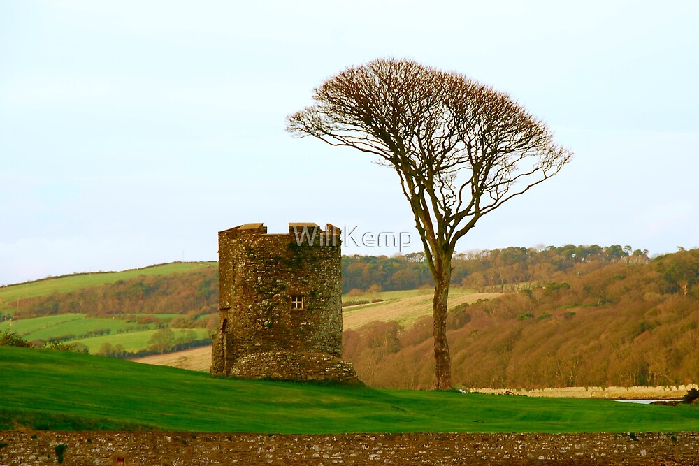 Tower And Tree by Will Kemp