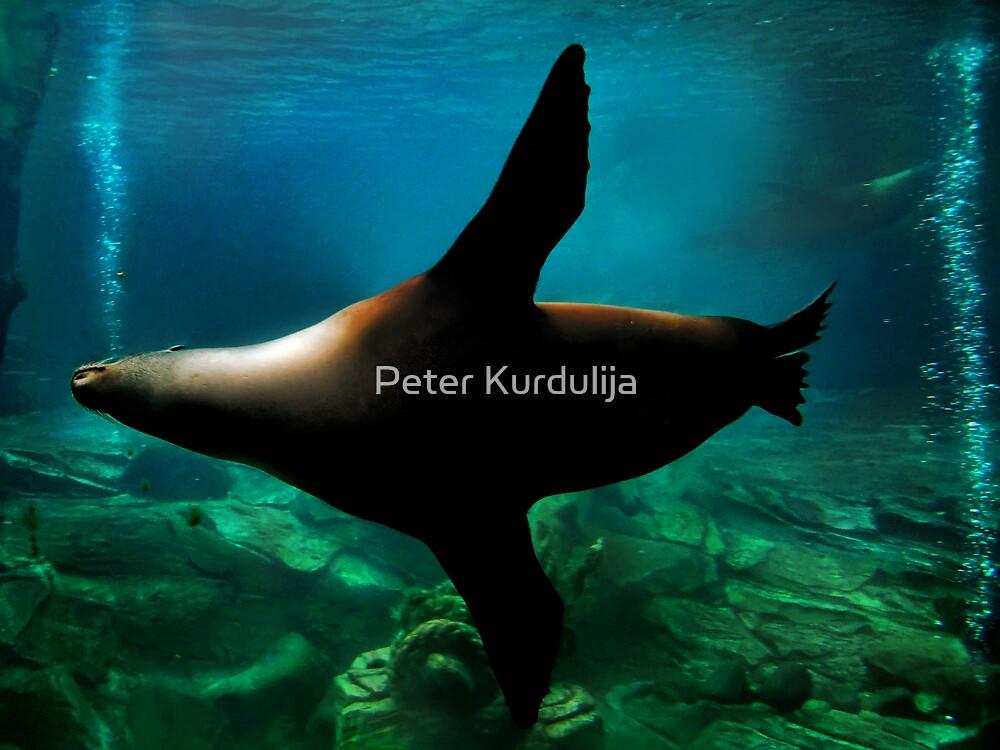Flying Below by Peter Kurdulija