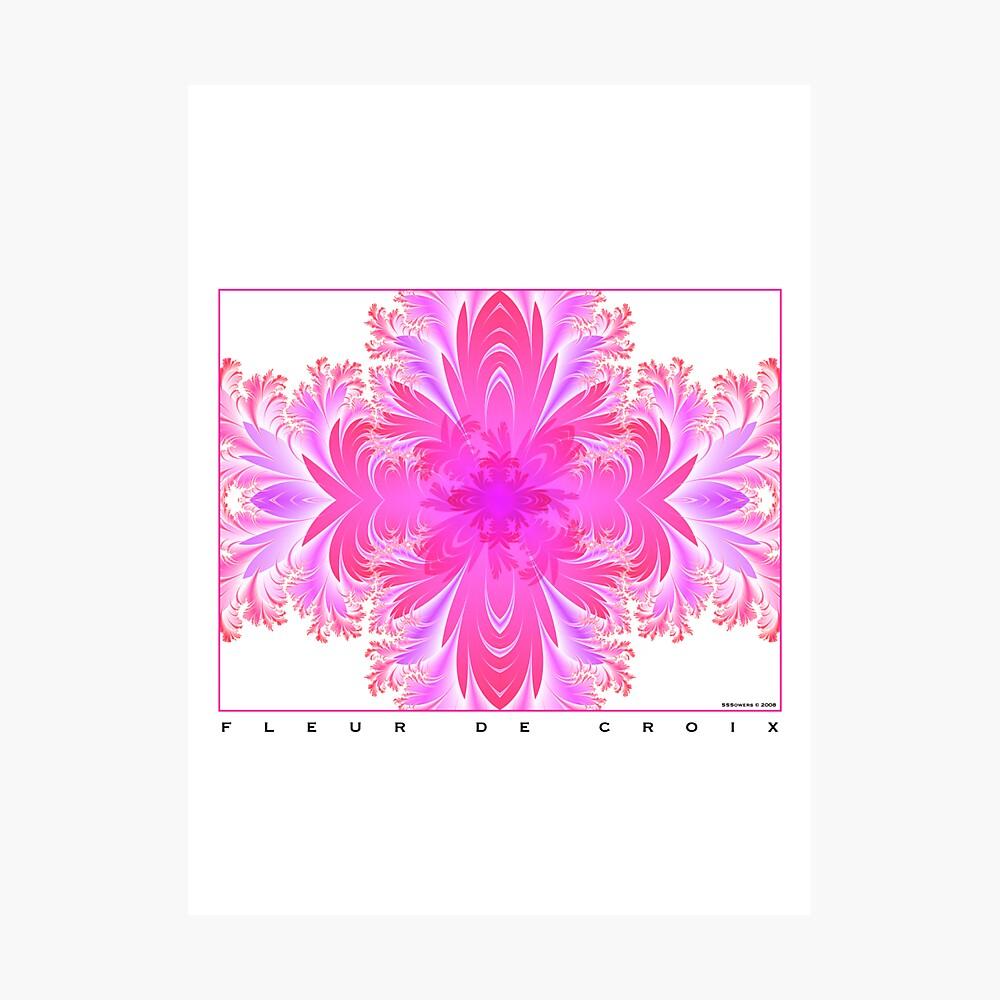 Fleur de Croix Fuchsia Photographic Print