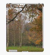 Natural fall framing iPad Case/Skin