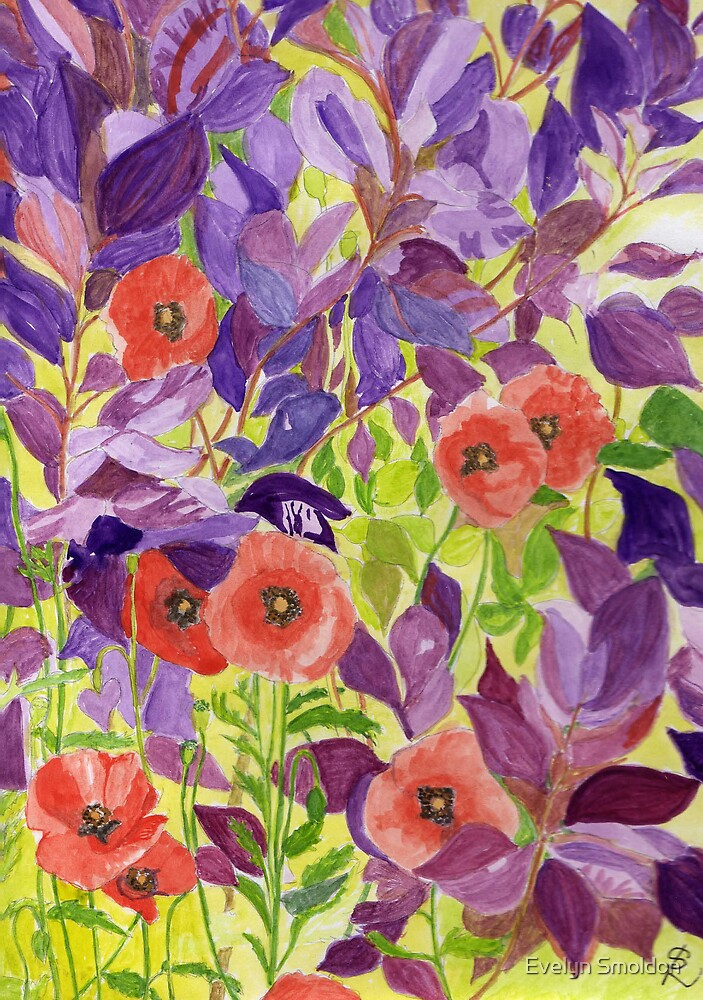 Poppies by Evelyn Smoldon