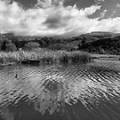 Clouds Reflected by BlaizerB