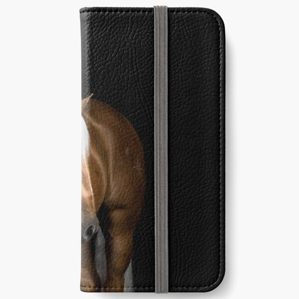 Palomino on Black iPhone Wallet