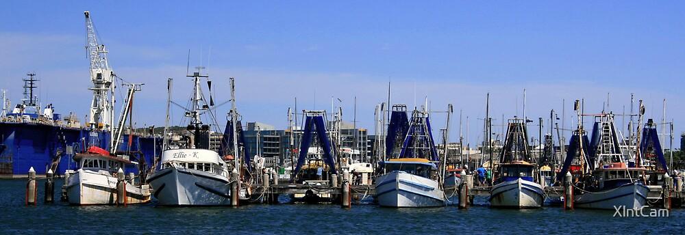 Fishing Fleet by XlntCam