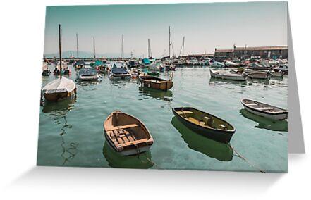 Lyme Regis Dorset UK by Pauline Tims