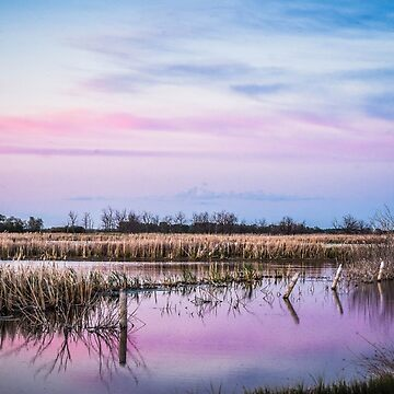 Cotton candy skies by ChicksPhoto