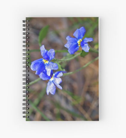 Dampiera linearis Spiral Notebook