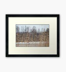 cold winter wind Framed Print
