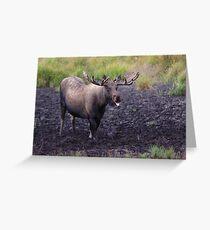 Merry Moose Greeting Card