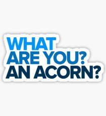 An Acorn? - Dear Evan Hansen Sticker