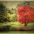 Antique Autumn by Anita Pollak