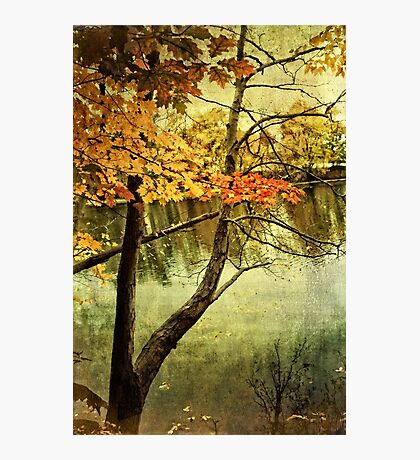 A Tranquil  Autumn Day Photographic Print
