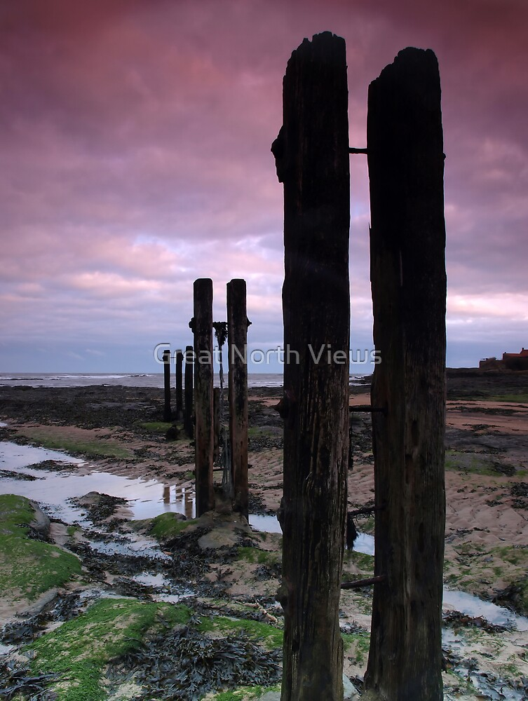 Old Wooden Posts by Great North Views