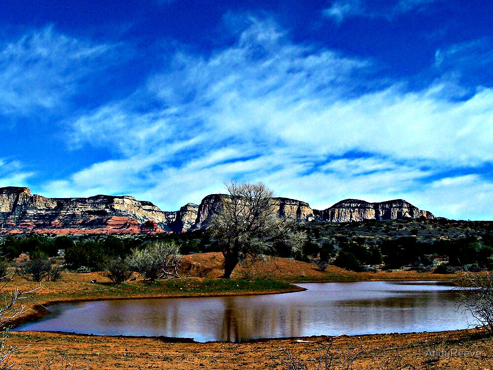 Watering Hole by AndyReeve