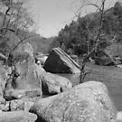 Rocky Trail by Susan Kopeck