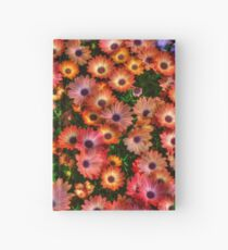 lots of daisies Hardcover Journal