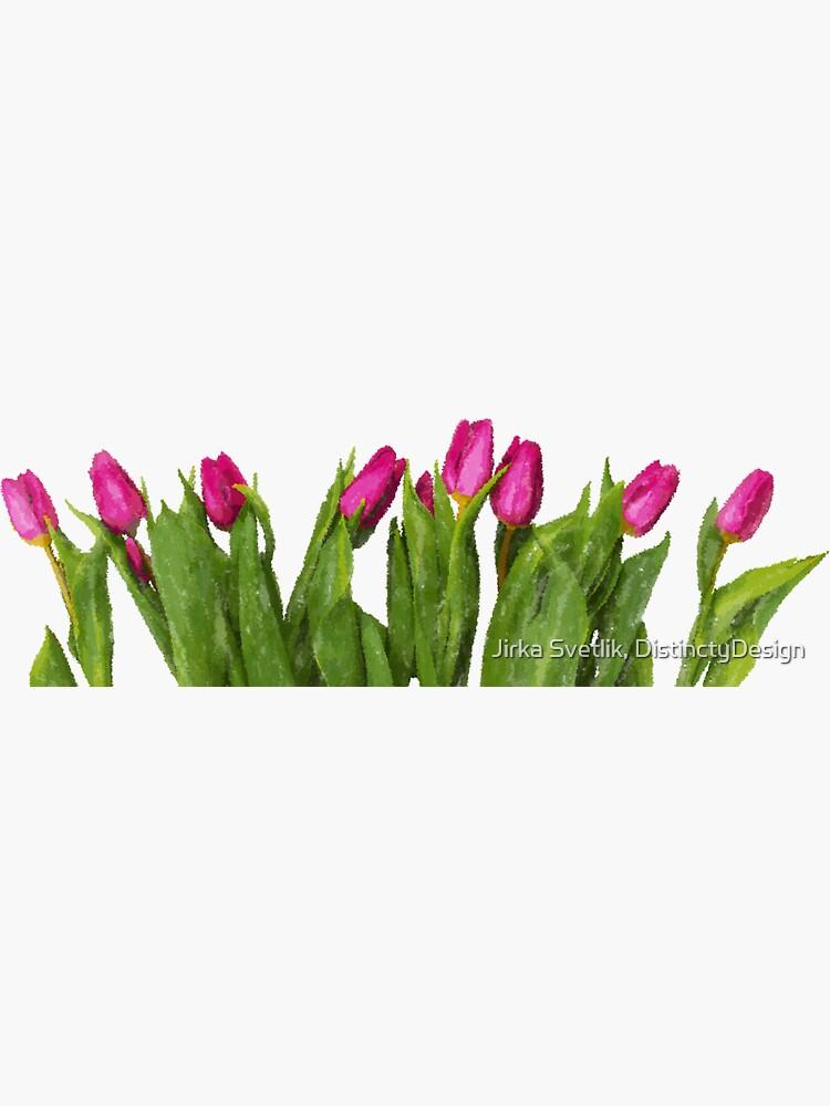 Tulip by jirkas