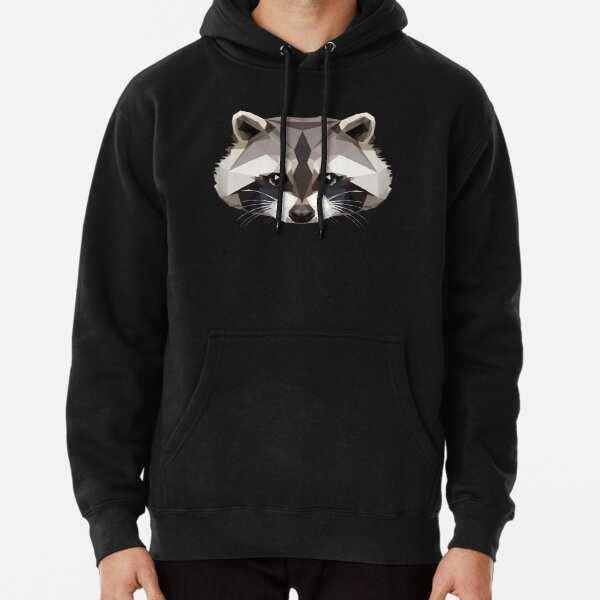 Cute Cartoon Raccoon On Animals Adorable Mens 3D Printed Pullover Long Sleeve Hooded Sweatshirts with Pockets