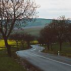 Along a rural road by ewkaphoto