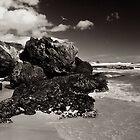 Osmiridium Beach Gulls 1 by Andrew Smyth