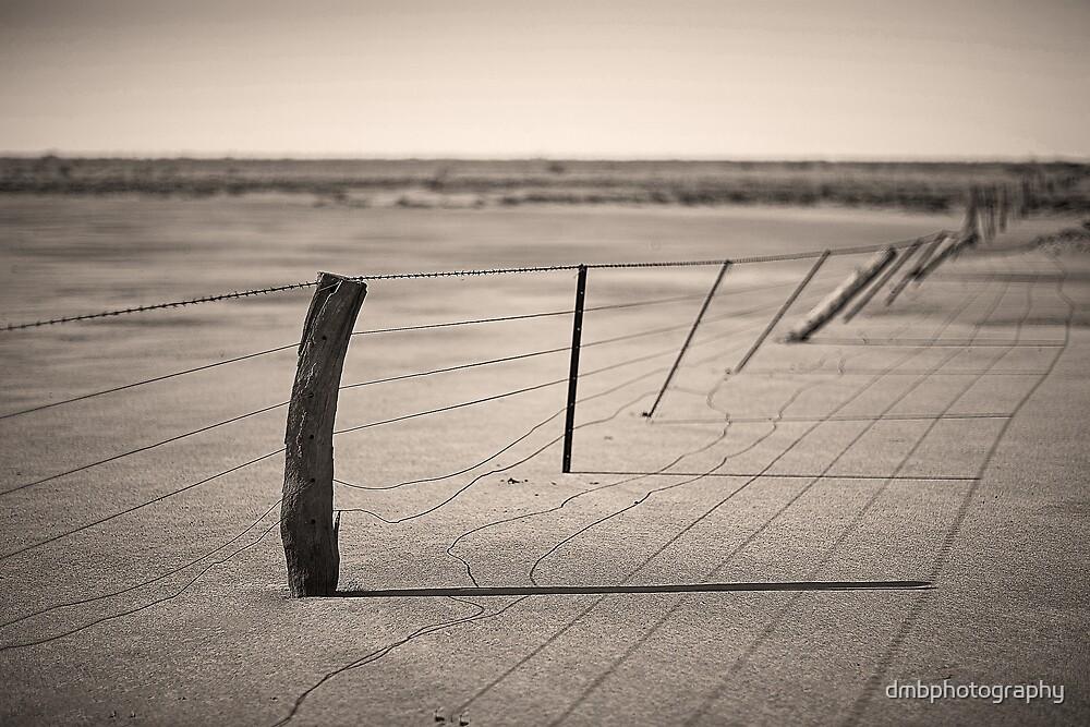 Barren by dmbphotography