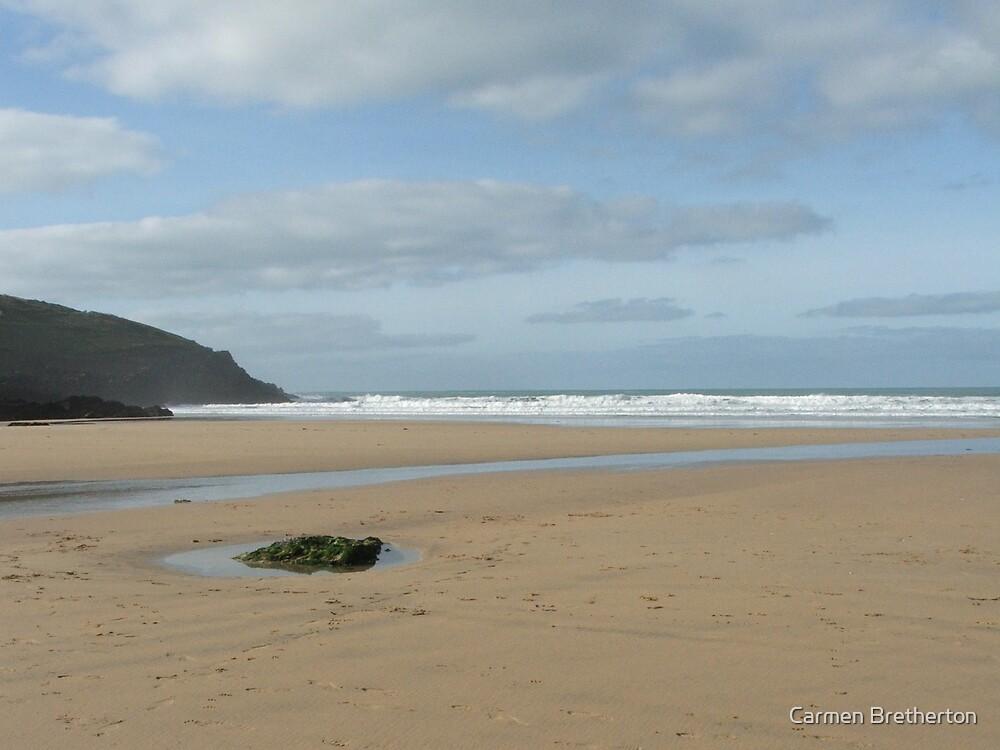 Fistral Beach by Carmen Bretherton