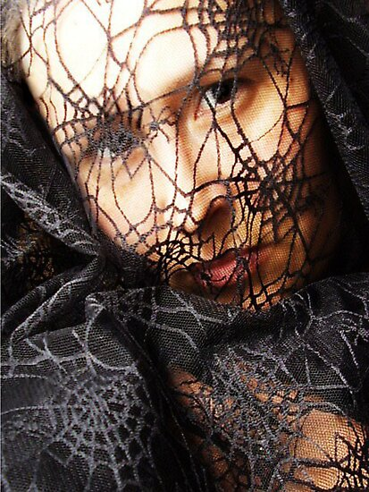 spiderweb by peyote