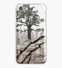 Snowy Washoe State Park iPhone Case/Skin