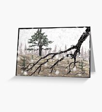 Snowy Washoe State Park Greeting Card