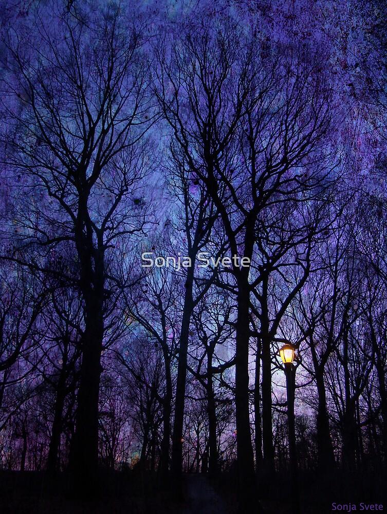 Night Light by Sonja Svete