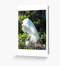 sheltering mother Greeting Card