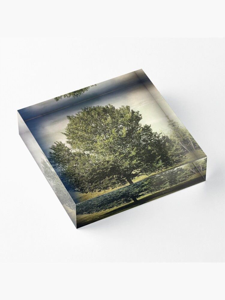 Alternate view of Nature Lovers Gift - Perfect Tree  Acrylic Block