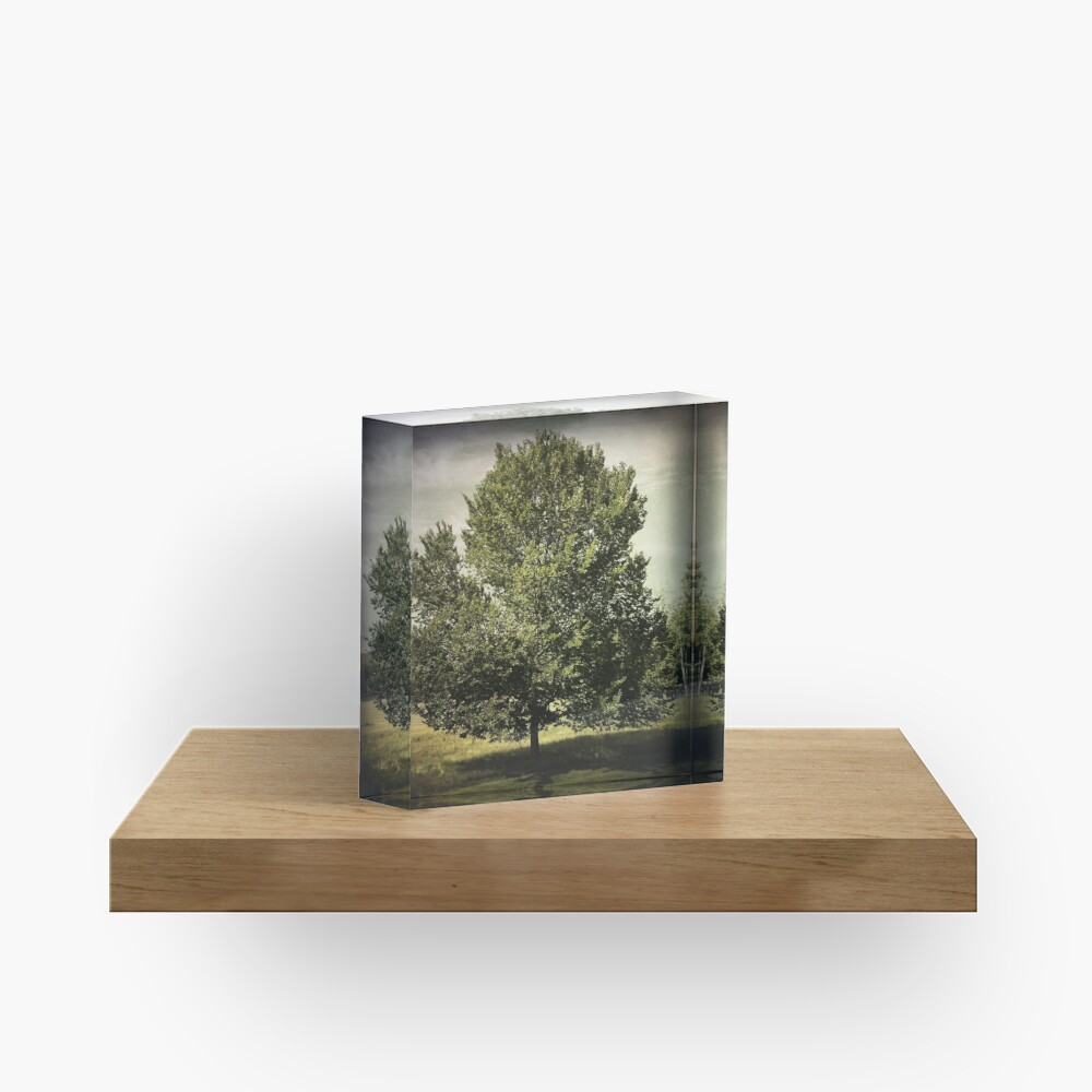 Nature Lovers Gift - Perfect Tree  Acrylic Block
