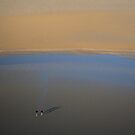 Insignificance by billyboy