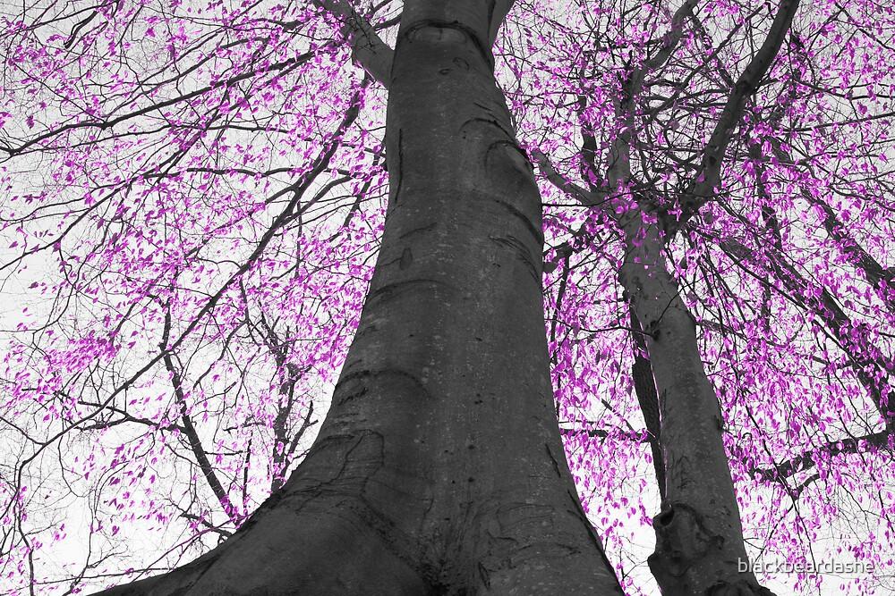 pink tree by blackbeardashe