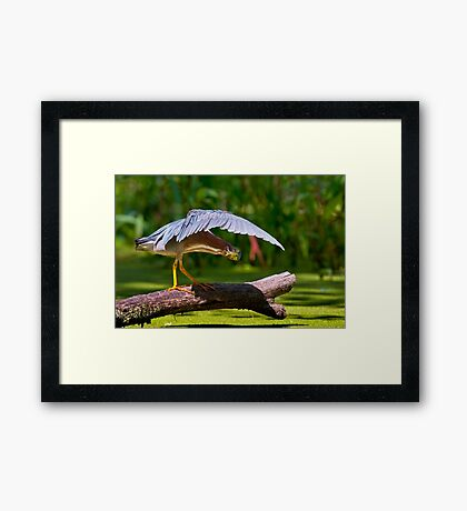 Oh There You Are ! Framed Print