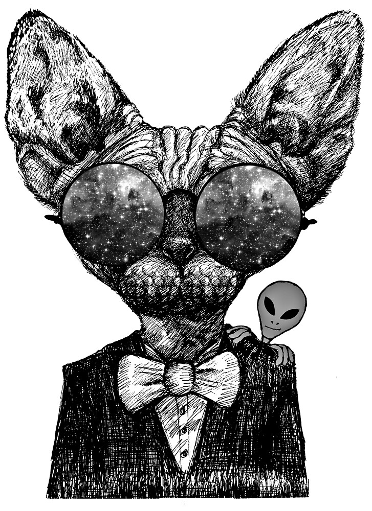Cat Sphynx  Alien by toshibung