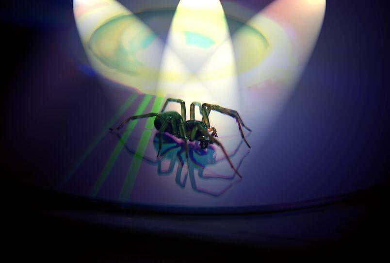 Spotlight Sid by SNAPPYDAVE