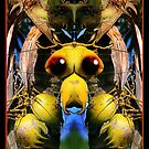 The Queen Ant of the Coconuts by Merilyn