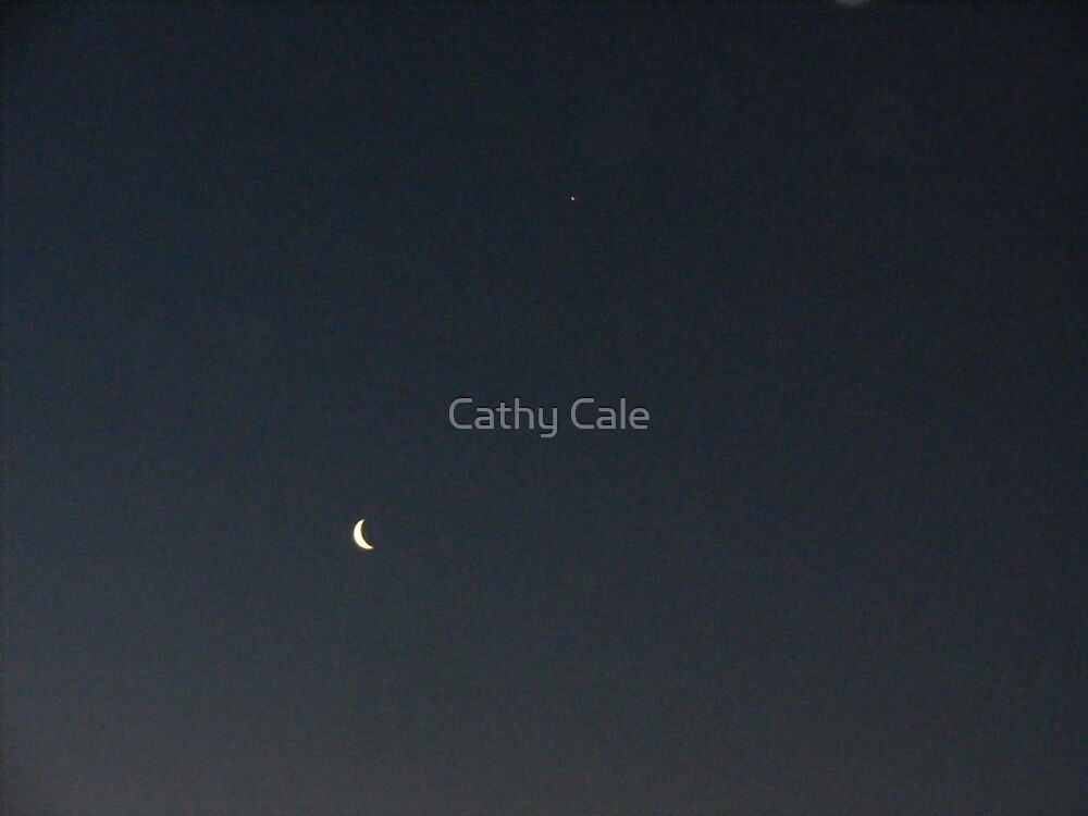 Moon by Cathy Cale